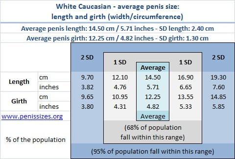Caucasian/white average and normal penis range, length and girth
